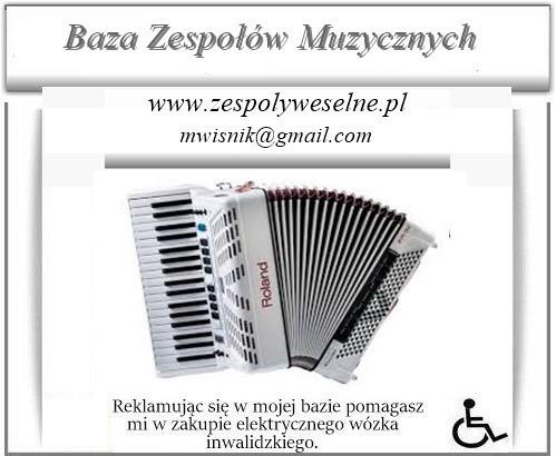 Baza Zespołów Muzycznych Mirex- zespolyweselne.pl 0