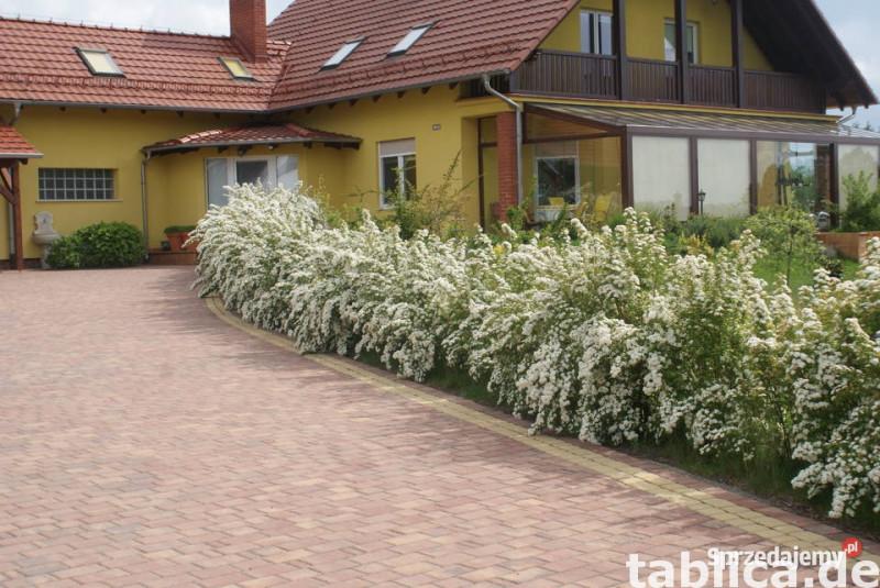 Bezpośrednio sprzedam komfortowy dom- Turawa Marszałki  1